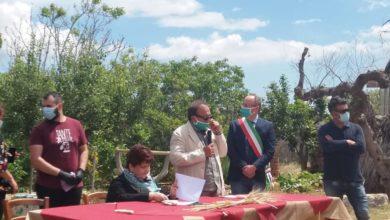 """Photo of Cia Puglia, """"Ministro Bellanova, ecco i 10 punti per ripartire"""""""