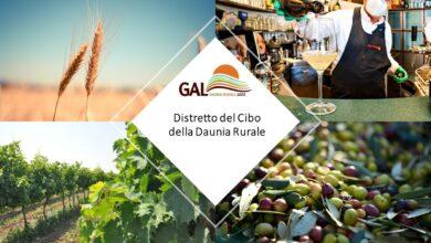 Photo of Distretto del Cibo della Daunia Rurale, candidatura in Regione