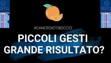 Photo of Il Comune plaude al successo di due giovani studenti del Liceo Rispoli – Tondi nel contest Cancro.