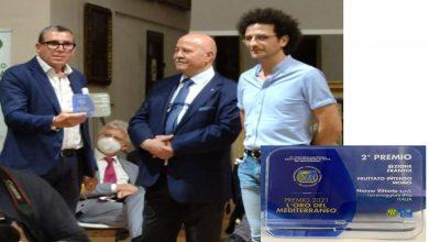 Photo of L'olio Nonno Vittorio porta a casa la sua vittoria Miglior Frantoio d'Italia