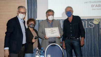 Photo of D'Araprì premiata dalla  Guida Cantine d'Italia 2021