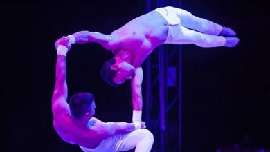 Photo of Trittico strepitoso, il Circo Bellucci con le attrazioni del Circo di Mosca e il Circo Royal a San Severo
